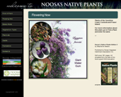 Noosa's Native Plants